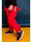 Флисовые спортивные штаны с крылышками Gufo