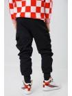 Штаны теплые с вышивкой LOCKNLOAD Manan